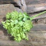 装飾のための緑の小型ギフトの創造的な人工的なプラント円形の陸生動物飼育器