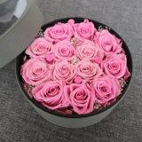 Il tipo decorativo molto tempo delle corone dei fiori ha conservato il fiore conservato rose