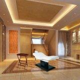 Elektrische Beauty Gezichtslift Massage Bed tafel voor SPA
