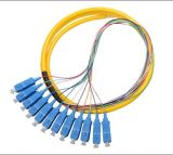 Mode Singel 72 câbles de dérivation de fibre
