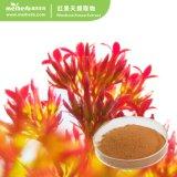 100% Natural Extracto de Rhodiola Rosea Rosavin1-5% Rhodioloside1-5%