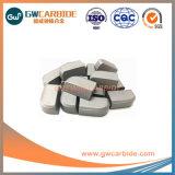 Il carburo di tungsteno C10/C12/C16 ha brasato gli inserti