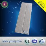Panneau de mur chaud de la vente WPC de constructeur de la Chine