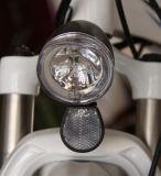 グリーン電力のチョッパーの電気バイク