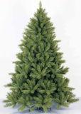 albero di pino del nobile di 210cm