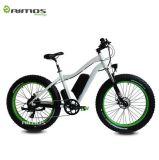 グリーン電力の完全な中断電気マウンテンバイク