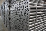 [تينجين] [يووفا] مصنع [إيتلين]/[سبنيش]/وسط شرقيّ/نوع [جرمن] سقالة فولاذ تدعيم دعائم