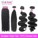 Tipi differenti estensione brasiliana dei capelli umani di Remy del commercio all'ingrosso dei capelli del Virgin