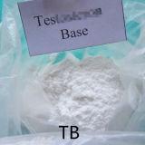 Мышечный Рост базы строительных материалов Testoster Testost сырья
