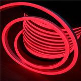 12V R-G-B-W de haute qualité néon Flexible Strip Light LED