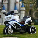 Elektrische Motorfiets van het Kind van de Motorfiets van de Jonge geitjes van Lier de Batterij In werking gestelde Mini