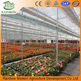 Venlo comercial tipo de material de construcción de aluminio de efecto invernadero de cristal de Itelligent vegetal agrícola