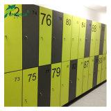 コンパクトな積層の体操のロッカー室の家具