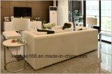 둥근 Sofe 작은 테이블 대리석 Matrials
