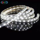 LEDの製造業者によるSMD3528 100m/Roll 3.5W/M LEDの滑走路端燈