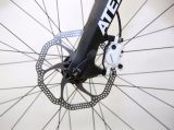 Aluguer Factory Deore 1*10 mountain bike (MTB25)