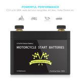 Batteria del dispositivo d'avviamento LiFePO4