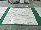 Mattonelle di marmo bianche del pavimento e della parete del granito