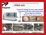 PPの機械(PPBG-520)を作る穴が付いている物質的なフルーツの容器