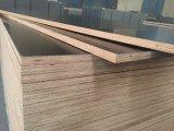 [بوبلر/] بتولا/خشب صلد لب بناء خشب رقائقيّ وقالب مؤقّت خشب رقائقيّ