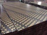 Shuttering van het Triplex van de Vinger van het Triplex van de Melamine van 18mm de Gezamenlijke Film Onder ogen gezien Bekisting van het Triplex