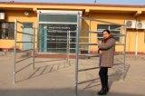 중국 제조 휴대용 강철 가축 야드 위원회 (XMR105)