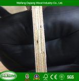Garantie de haute qualité doigt avec film de contreplaqué de base commune face à la construction