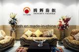 Tela de materia textil popular de los muebles de la tela del sofá de 2017 miradas del lino (FTD31060)
