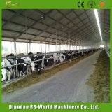 가축과 젖소 축사 담