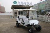 6 Seaters elektrischer Golf-Autobatterie-Aufladeeinheits-Preis