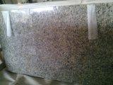 Geel Graniet voor Gele countertop-Vlinder