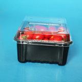 卸し売りフルーツのPunnetの明確なふたが付いている包装のまめのプラスチッククラムシェル