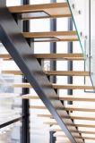 Trap van het Glas van de Montage van het flard de Stevige Houten Rechte op Moderne Algemene Vergadering