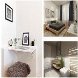 최신 판매 Customizable 사무실 콘테이너 집