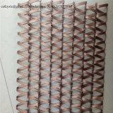 Het decoratieve Netwerk van het Scherm van het Metaal voor het Netwerk van het Comité van de Verdeler van de Zaal