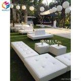 Cerimonia nuziale esterna bianca familiare del giardino di Lasy Cum il sofà da vendere