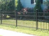 住宅の鉄の黒の鋼鉄に庭の囲うこと