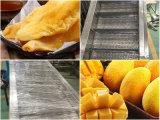 無菌パッケージのマンゴのパルプの加工ライン