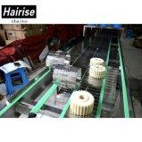Sistema de transporte de transportador de corrente de chapa de aço inoxidável
