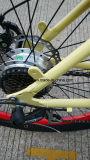 脂肪質のタイヤの巡洋艦の電気自転車の製造業者