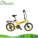 Cms-TDM05z bicicleta elétrica de 6 velocidades com dois assentos