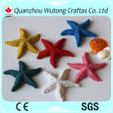 Hauptdekoration natürliche MiniPolyresin Starfish