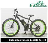 Bestes Preis-Grün-elektrisches Fahrrad mit fettem Gummireifen für Verkauf