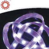 싼 가격 SMD LED 지구