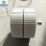 generatore a magnete permanente di 300W 12V/24V