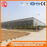Serre chaude en verre de structure métallique d'agriculture de la Chine