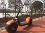 RoHS 2017 y vespa eléctrica grande de Citycoco de dos ruedas de los nuevos productos del certificado del EEC