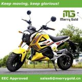 1500W Cool EEC Electric Motorcycle for European
