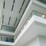 Het nationale Comité van de Gordijngevel van het Aluminium van het Comité van het Aluminium van het Ontwerp Voor Binnen en OpenluchtDecoratie met Vuurvaste ISO9001 Van uitstekende kwaliteit