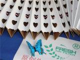 V-Forma de papel de filtro seco durante cabina de pintura